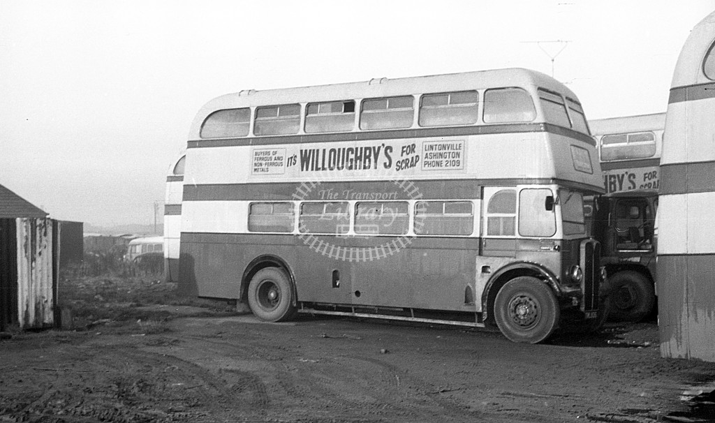 Bedlington & District AEC Regent III TWL  at depot  in 1968 -  November  - JS Cockshott