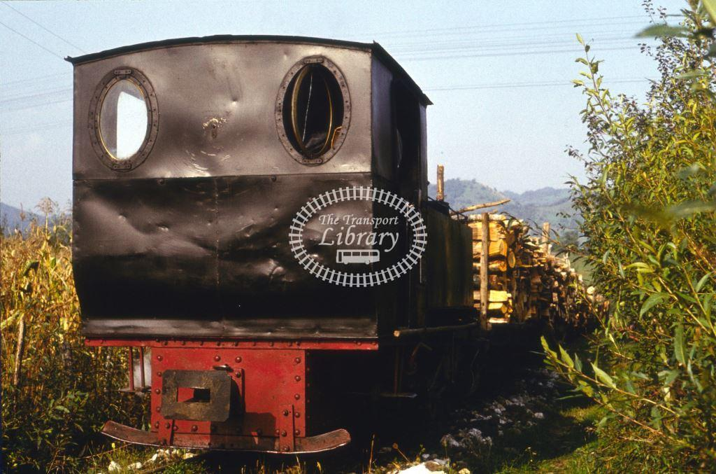 CFR Romania Railways Steam Locomotive Class 764 764 222  at Forestry Line in 1975 - 24/09/1975 - Keith Taylorson