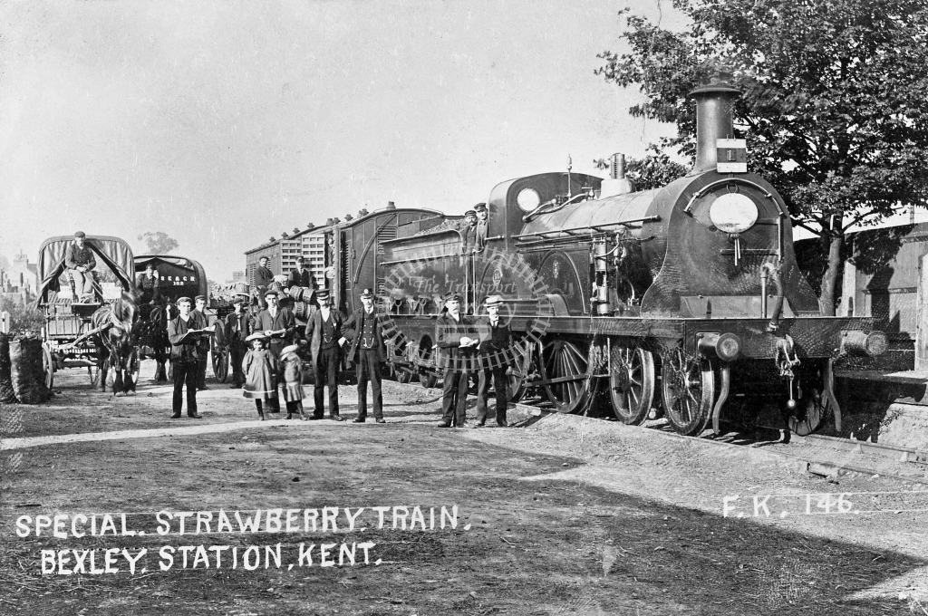 SER Bexley F class No, 103 on strawberry train in yard postcard view c. 1905 - Lens of Sutton Association SECR Stations part 1