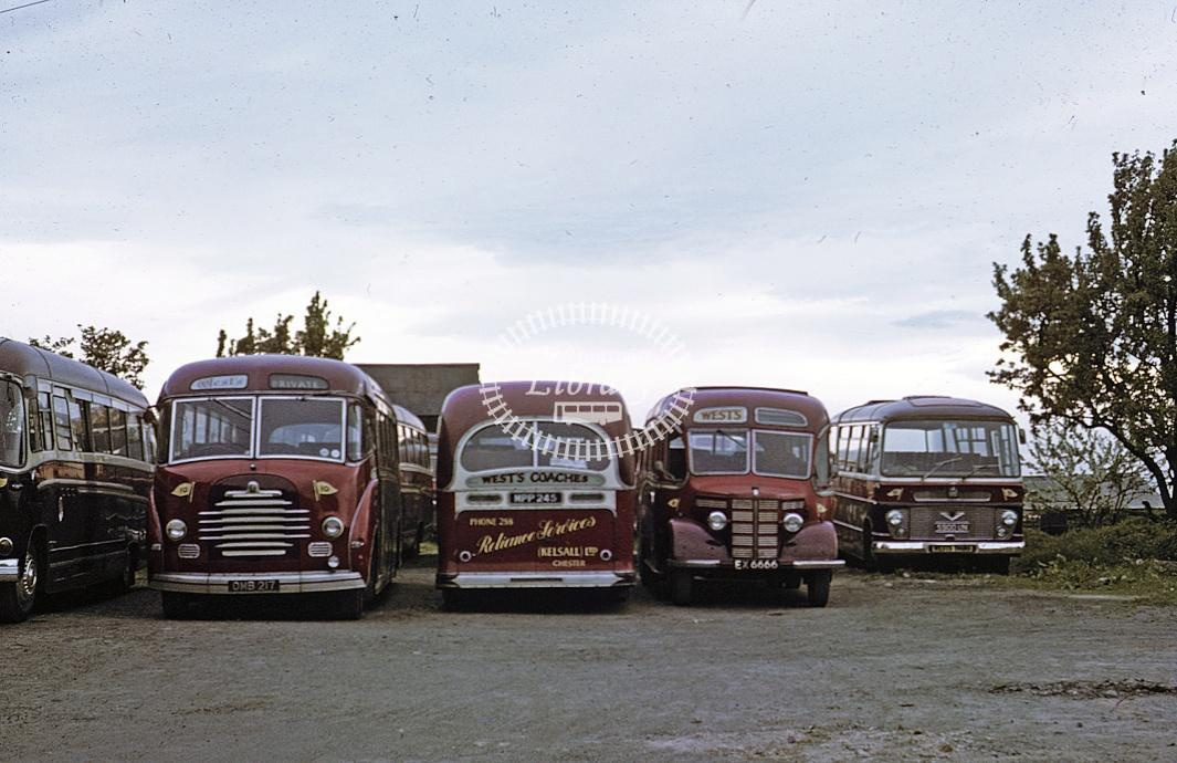 Reliance, Kelsall All Bedfords Various at Depot/Garage in 1970 - May 1970 - Roy Marshall