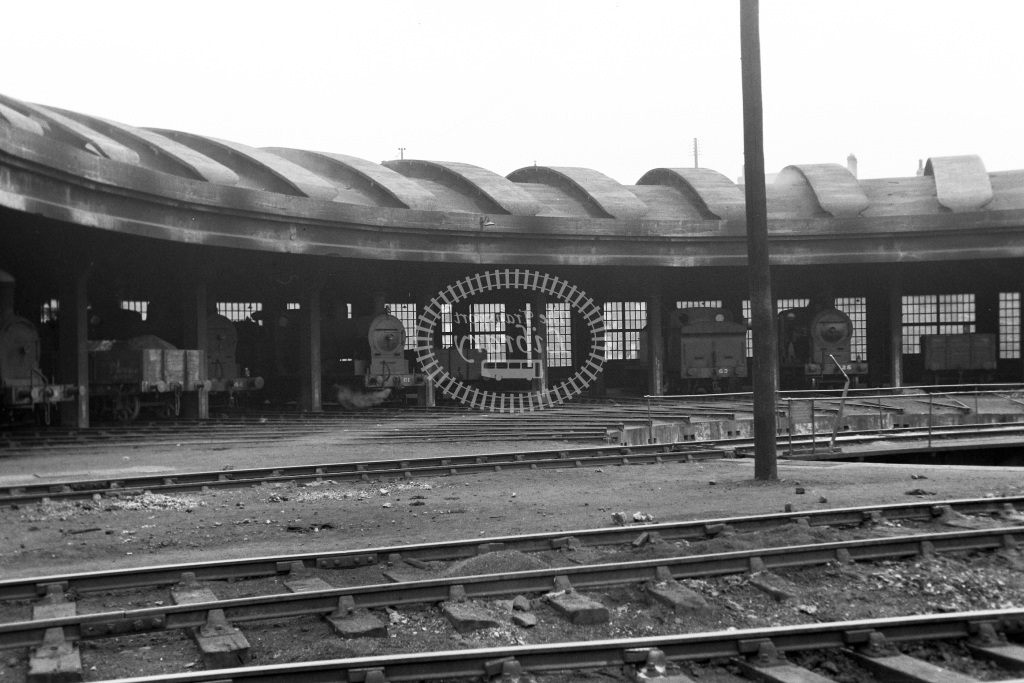 GNR(I) Great Northern Railway (Ireland) Steam Locomotive Shed Scene  at Portadown  in 1955 -  20/06/1955  - Peter Gray