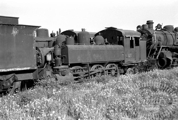 FCE Chile Railways Steam Locomotive Class 68 645  at San Bernardo in 1974 - Tommy Farr